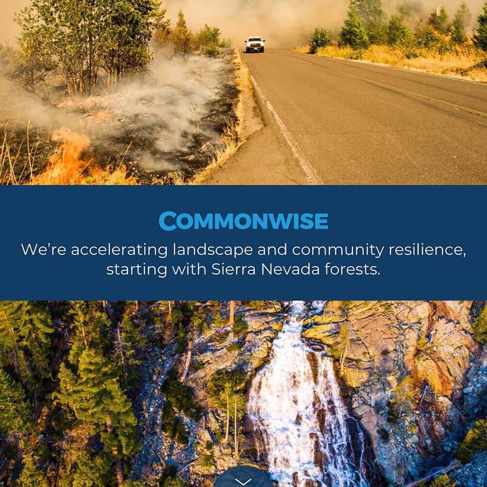 Commonwise