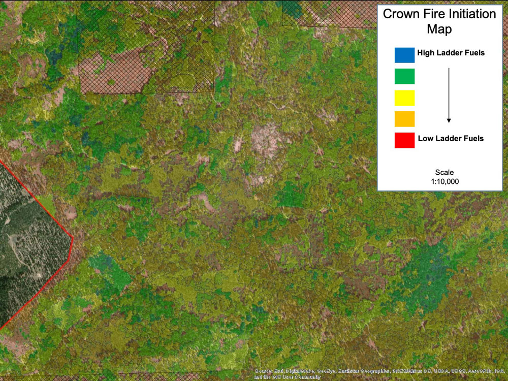 ASSESS - Map Vegetation and Fuels