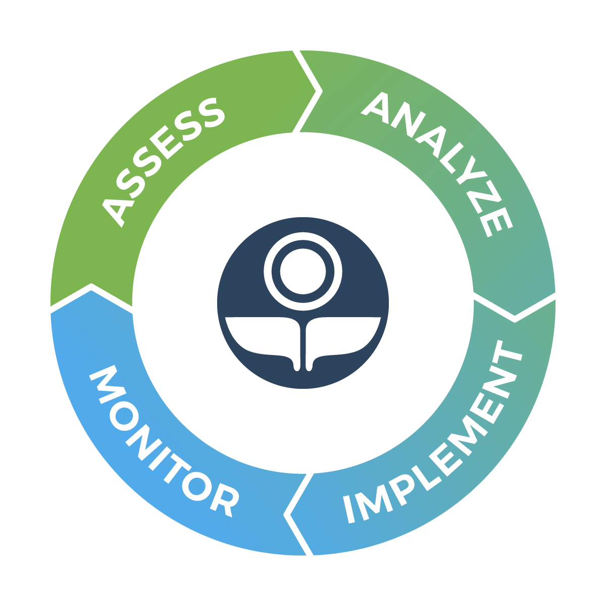 Vibrant Planet Assess-Analyze-Implement-Monitor Services Diagram